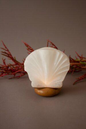 Shell Alabaster Candle Holder
